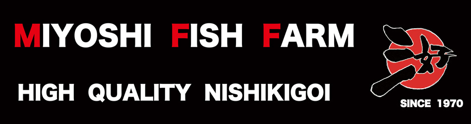 Miyoshi Fish Farm