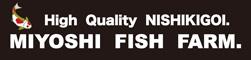 三好養魚場 | Miyoshi Fish Farm