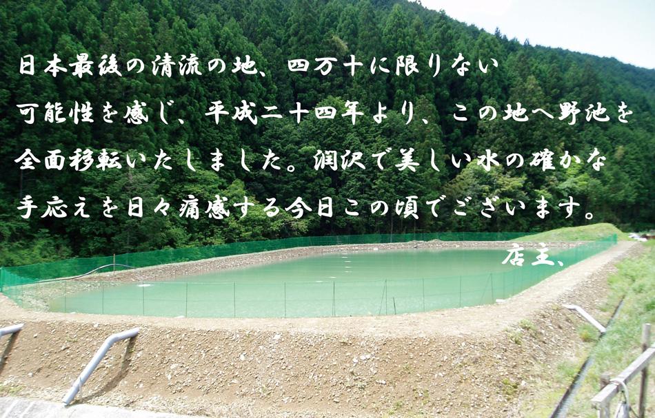 野池紹介1